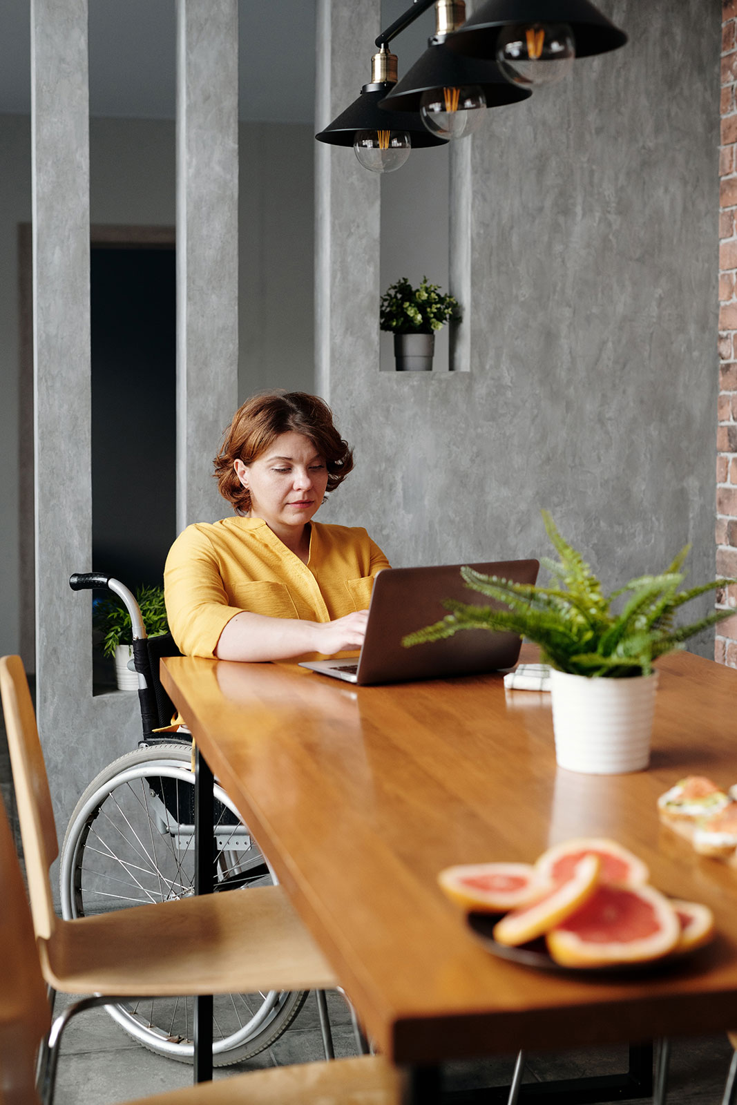 senior and disabled resources